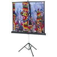 Проекционный экран Projecta Professional 152x152 см, MW (10430108)