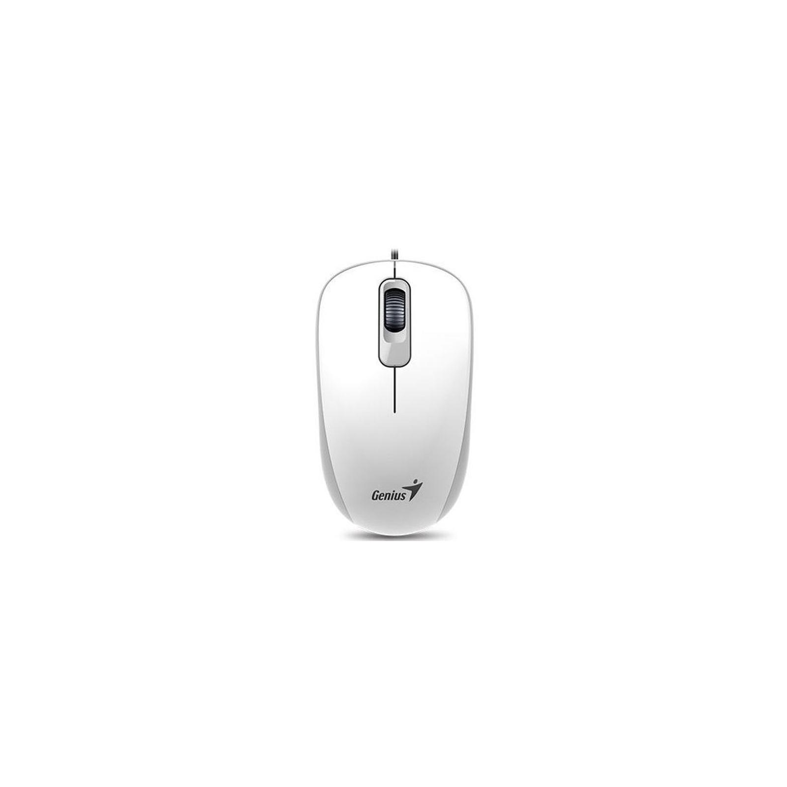 Мышка Genius DX-110 USB White (31010116102) изображение 2
