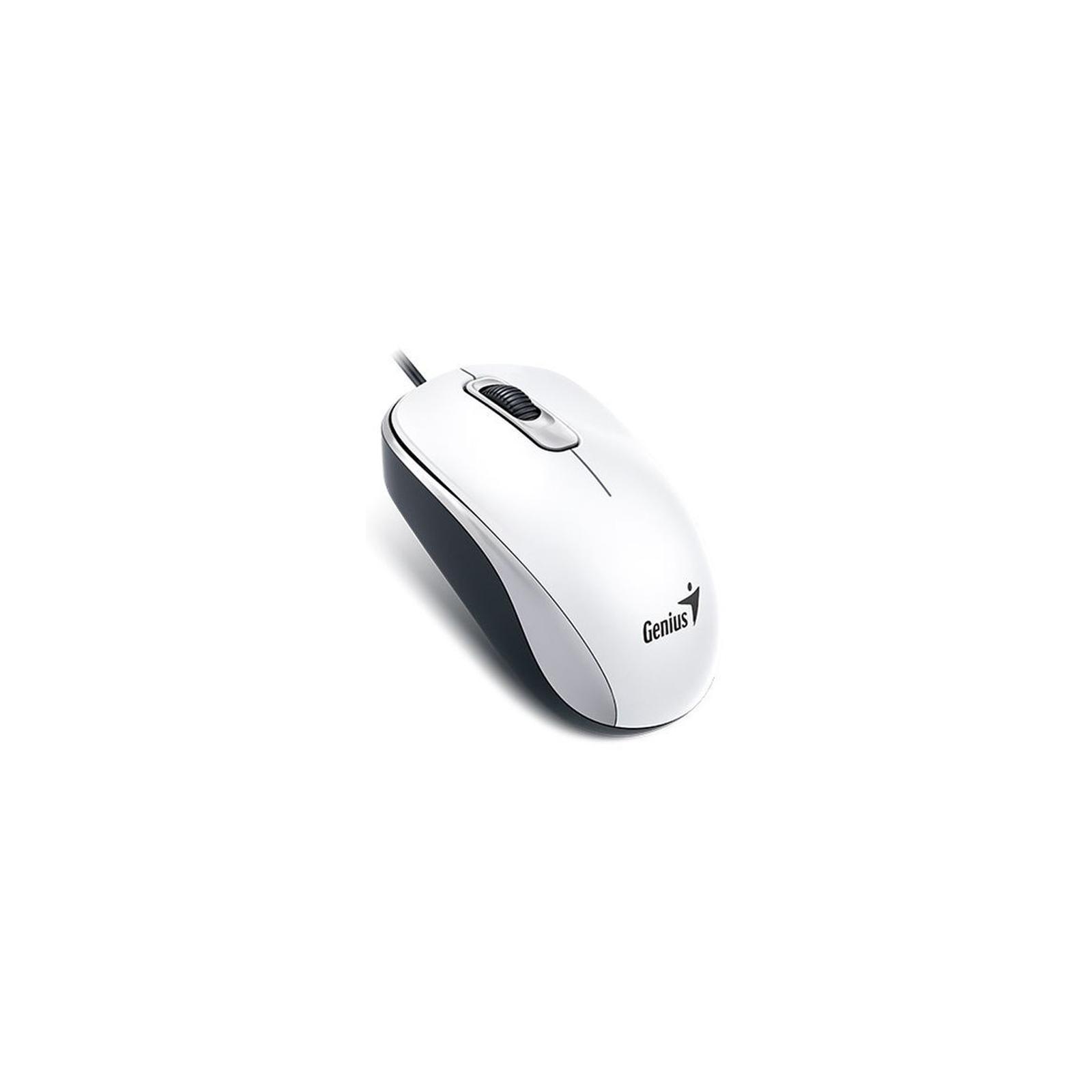 Мышка Genius DX-110 USB White (31010116102)