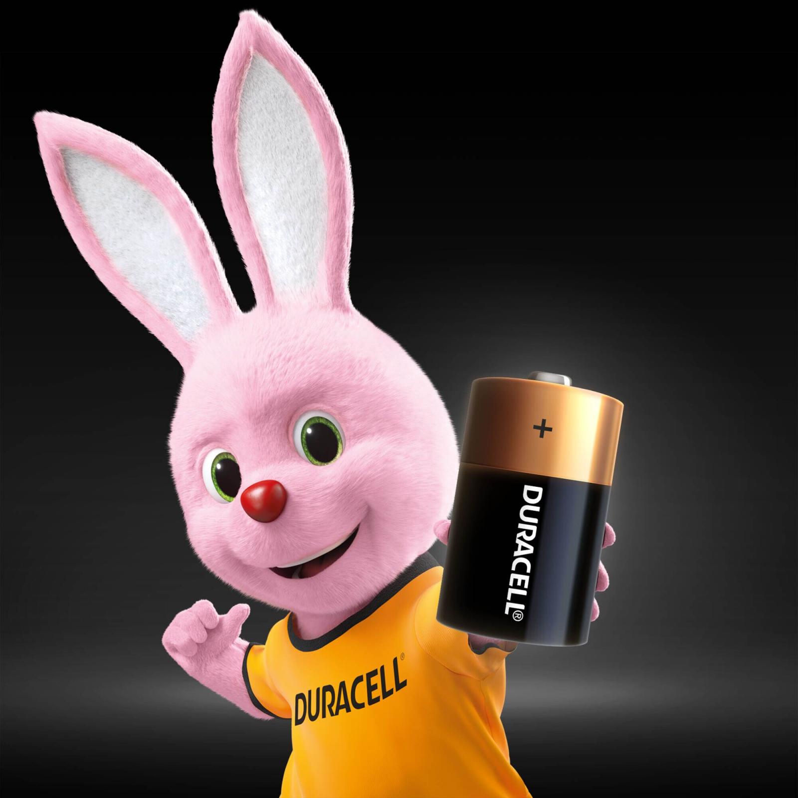 Батарейка Duracell D LR20 * 2 (5000394052512 / 81483648) изображение 3