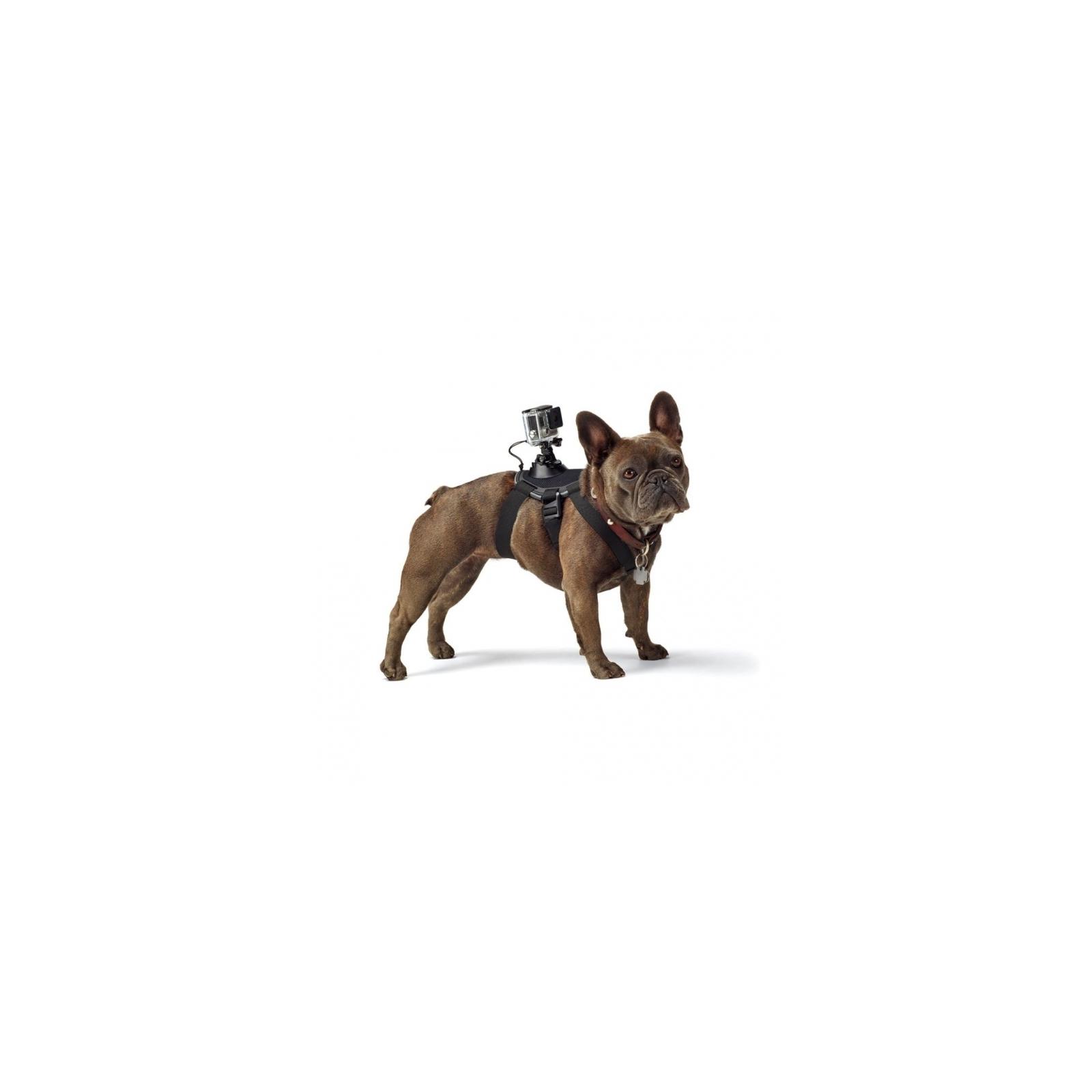 Аксессуар к экшн-камерам GoPro Fetch (ADOGM-001) изображение 2