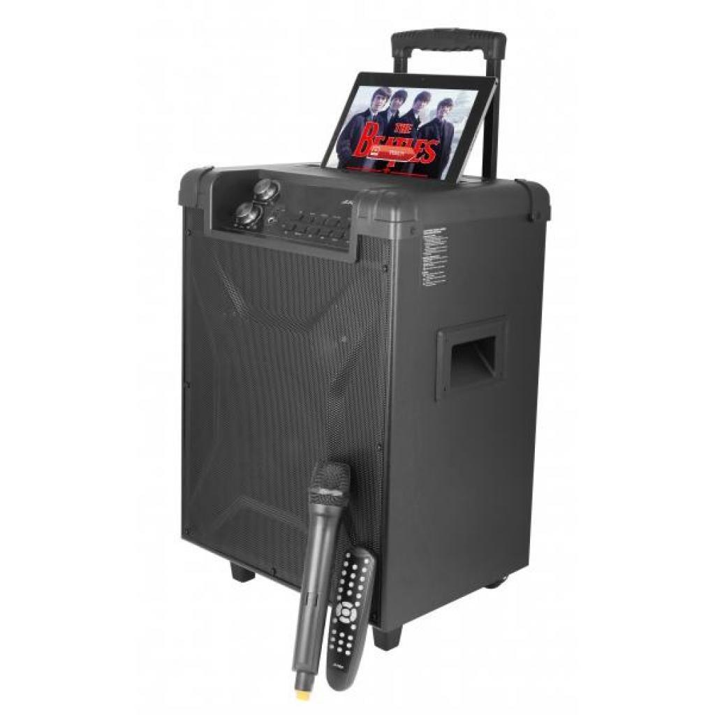 Акустическая система F&D T2 FM Black изображение 4