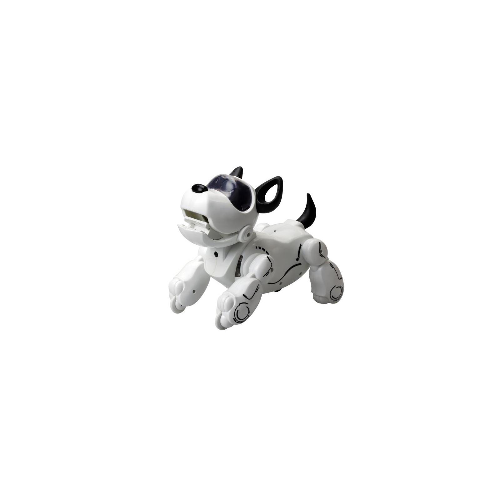 Интерактивная игрушка Silverlit собака-робот PUPBO (88520)
