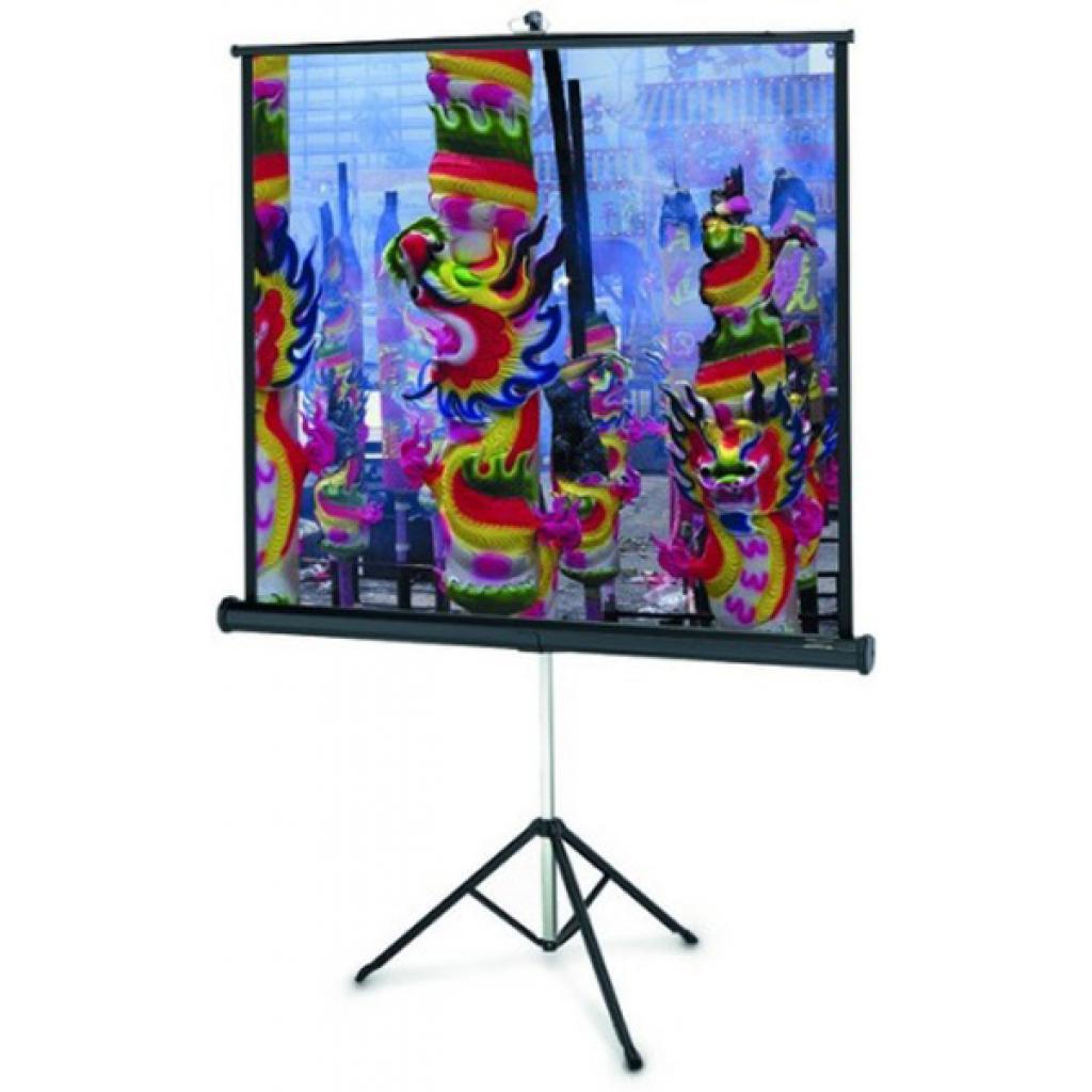 Проекционный экран Projecta Professional 178x178 см (10430109)
