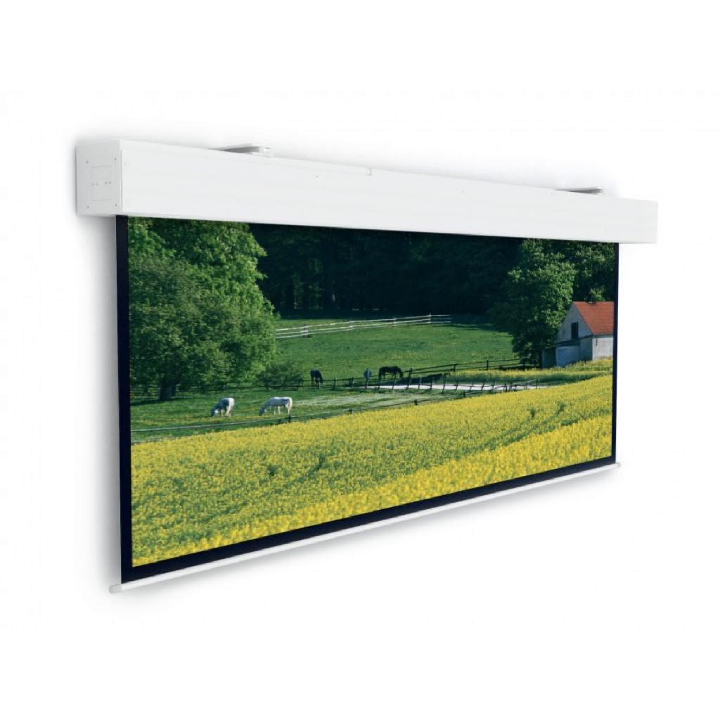 Проекционный экран Projecta Elpro Large Electrol 316x500cm (10100338)