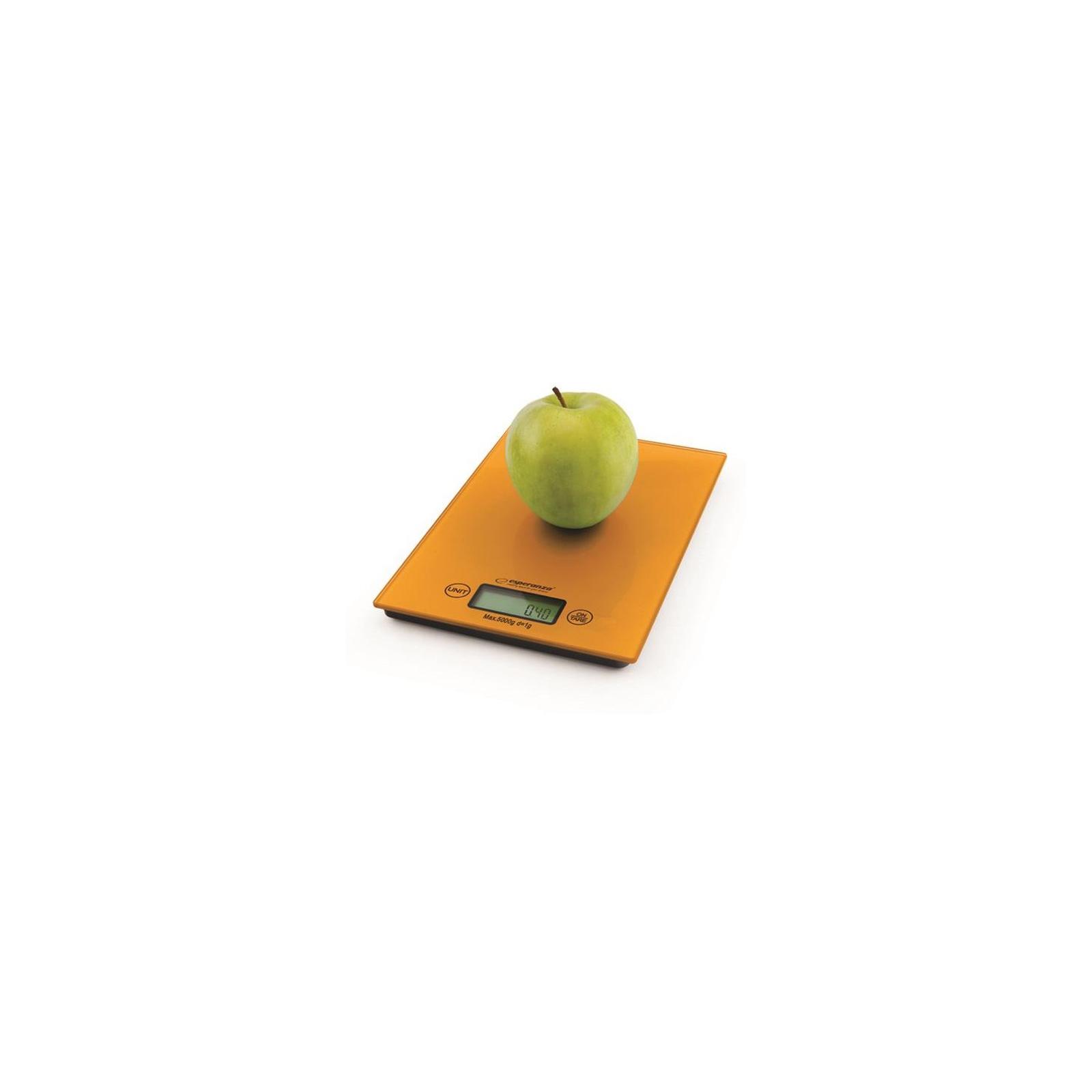 Весы кухонные Esperanza EKS 002 O (EKS002O) изображение 2
