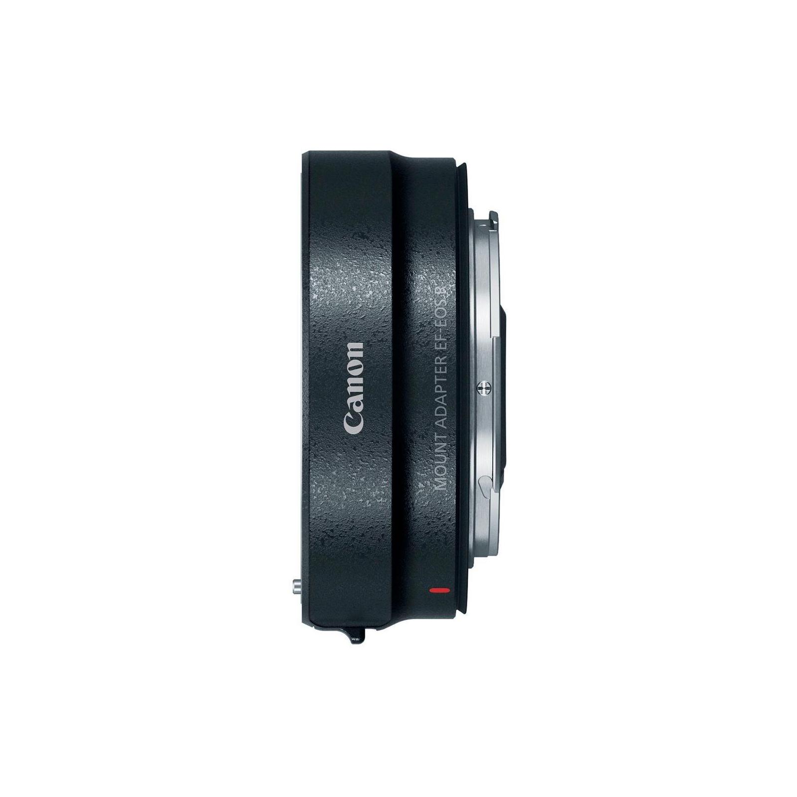 Цифровой фотоаппарат Canon EOS R RF 24-105L kit + адаптер EF-RF (3075C060) изображение 9