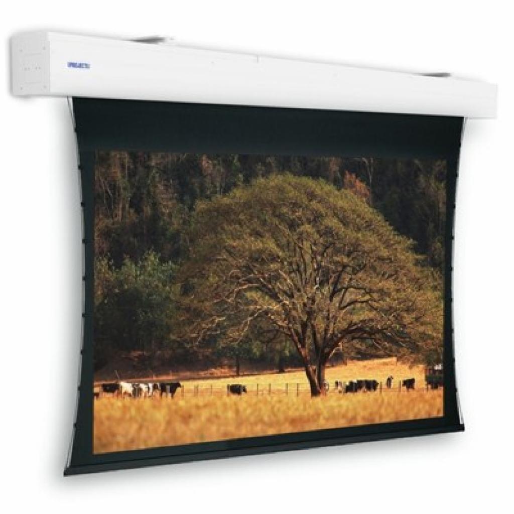 Проекционный экран Elpro Large Electrol Projecta (10100312)