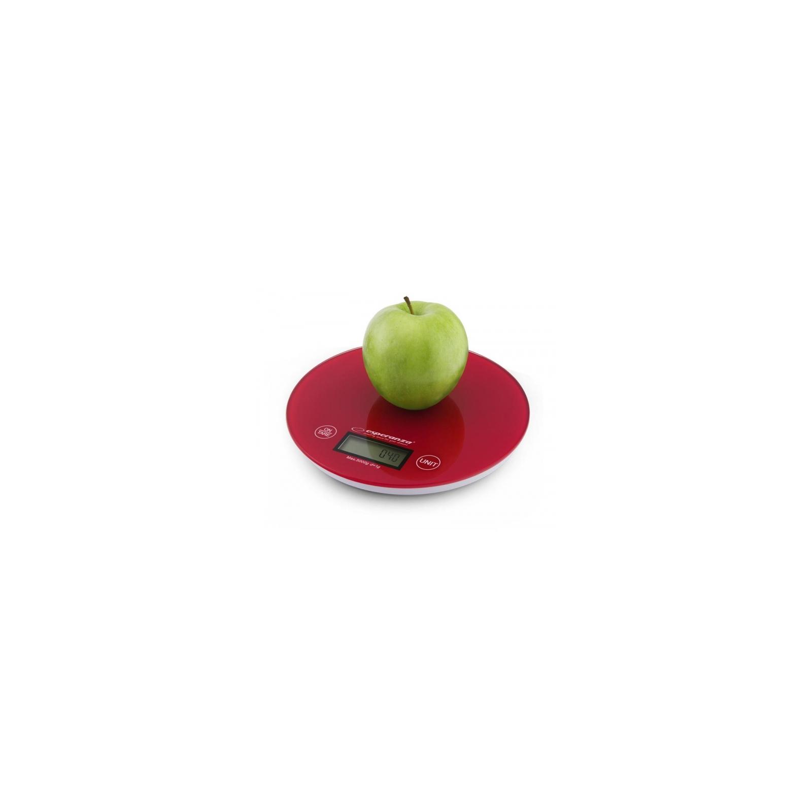Весы кухонные Esperanza EKS 003 R (EKS003R) изображение 2