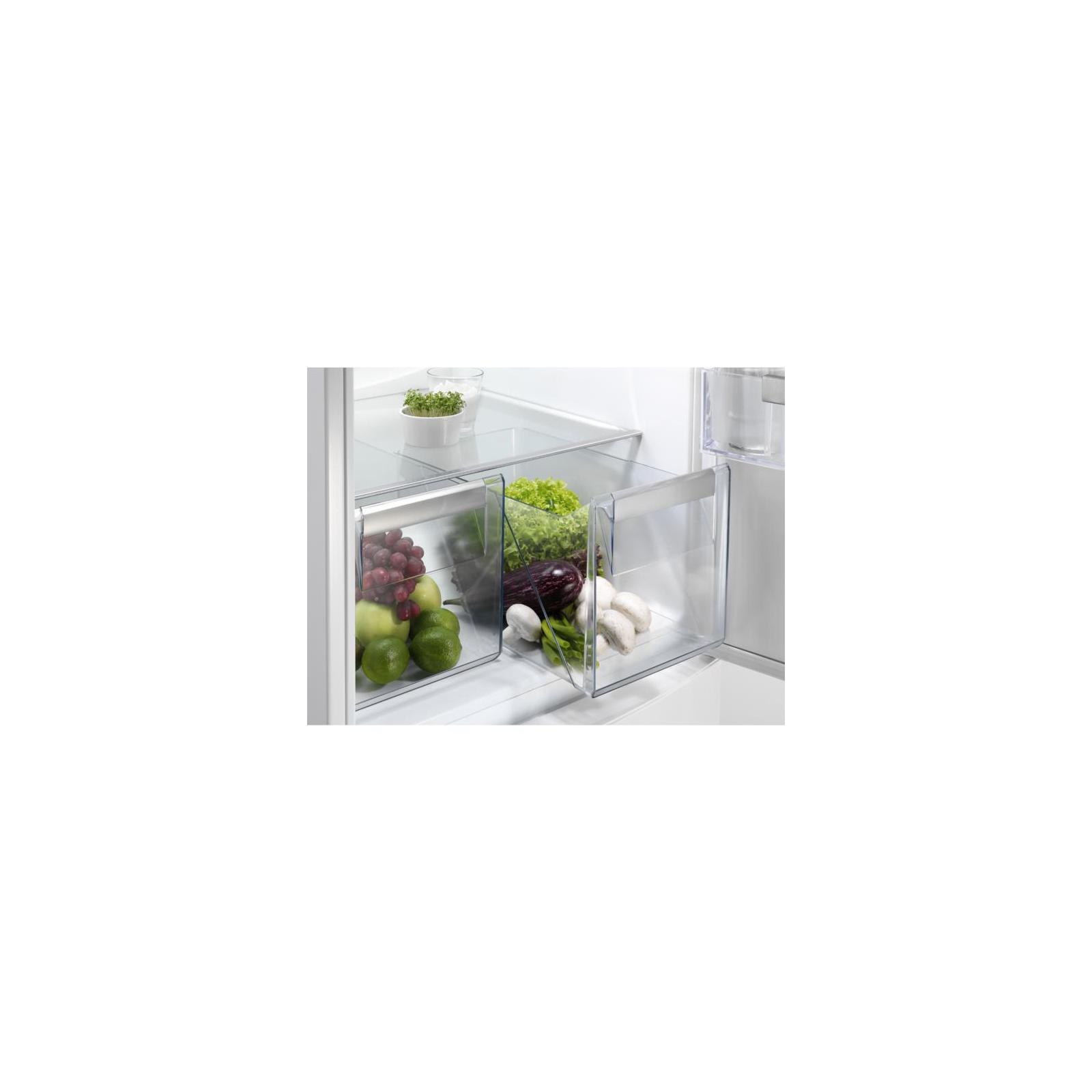 Холодильник ELECTROLUX EN3452JOX изображение 5