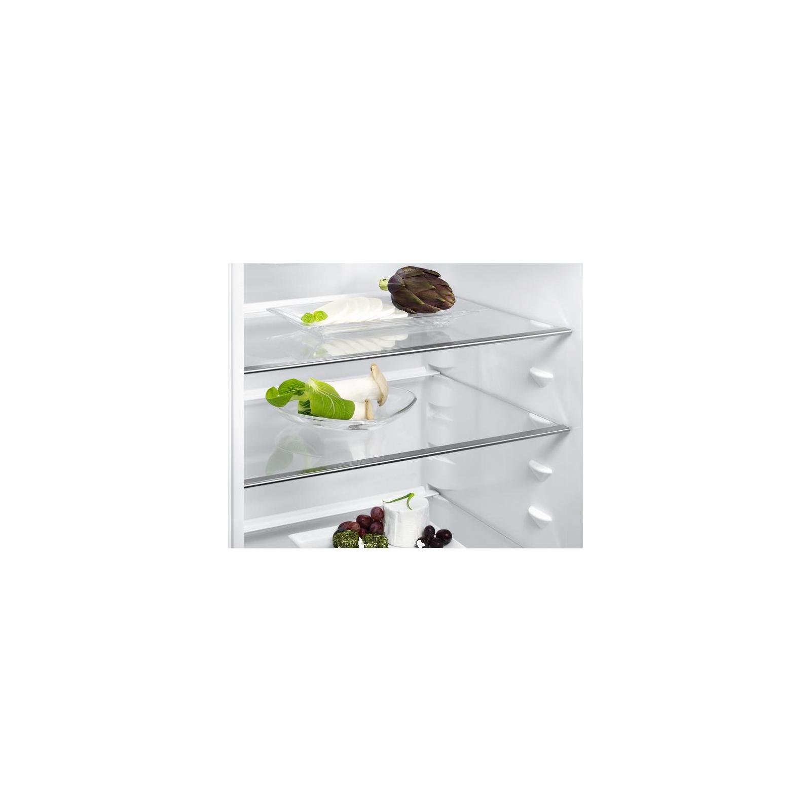 Холодильник ELECTROLUX EN3452JOX изображение 6