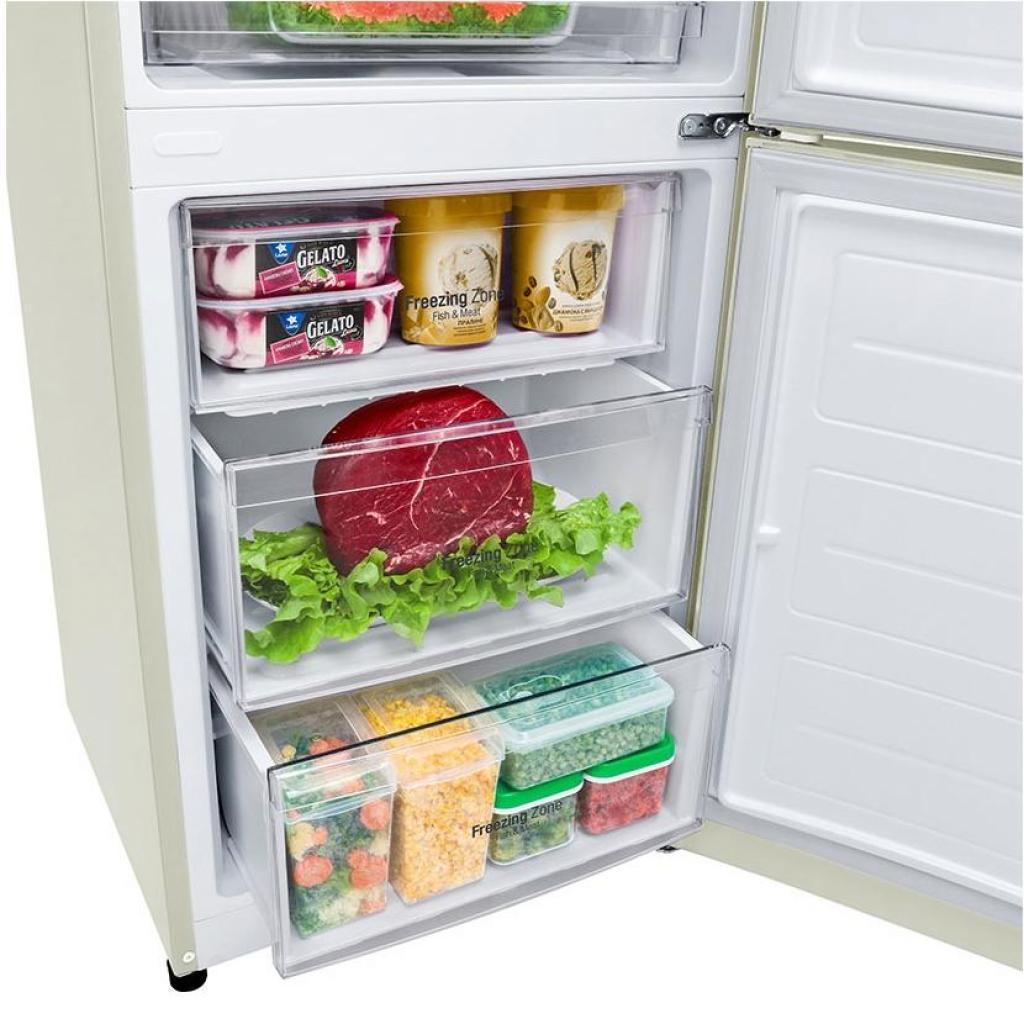 Холодильник LG GA-B499YYJL изображение 9