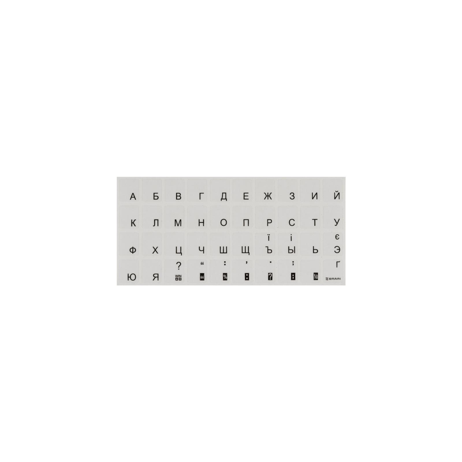 Наклейка на клавиатуру BRAIN black (STBRTRBLACK)