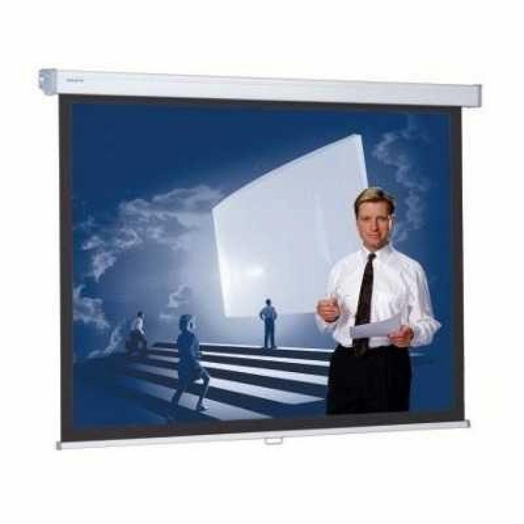 Проекционный экран ProScreen MWS 129x200cm Projecta (10201062)