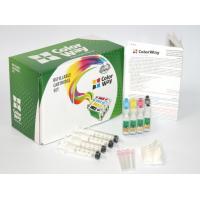 Комплект перезаправляемых картриджей ColorWay Epson XP313/413/103/203 (XP313RC-4.1)