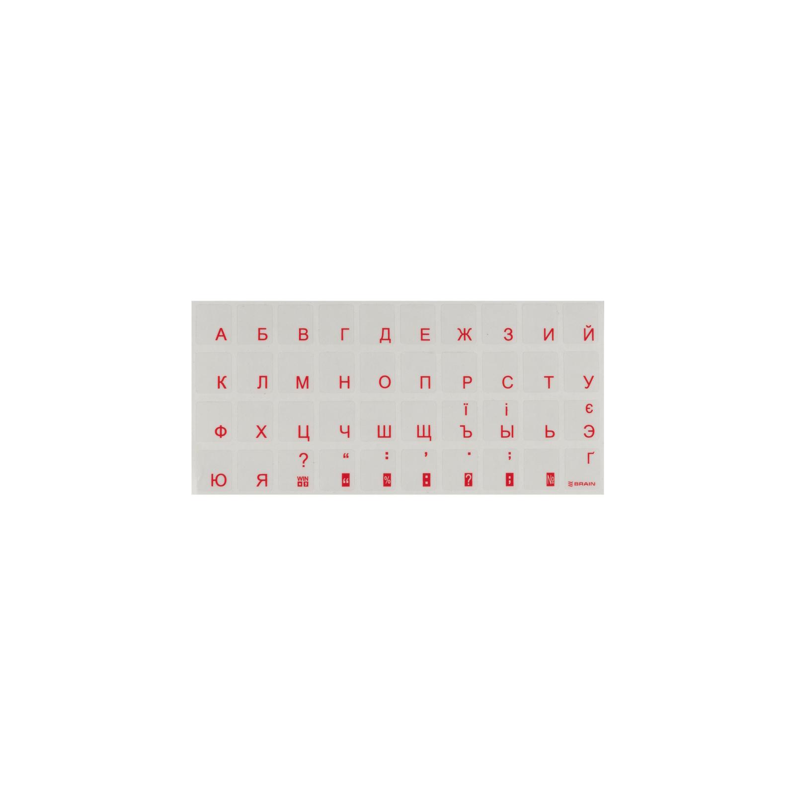 Наклейка на клавиатуру BRAIN red (STBRTRRED)