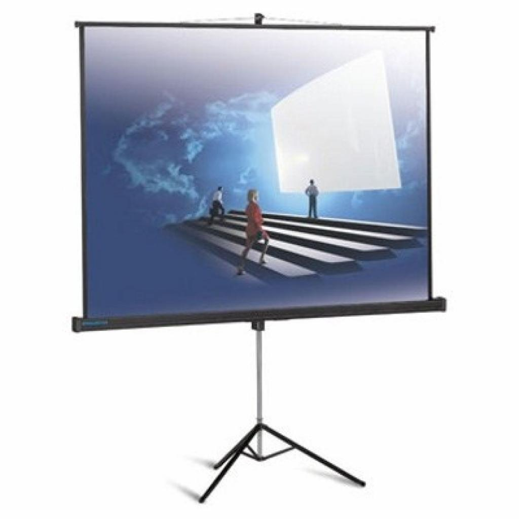 Проекционный экран Picture King 185x244 cm Projecta (10430037)