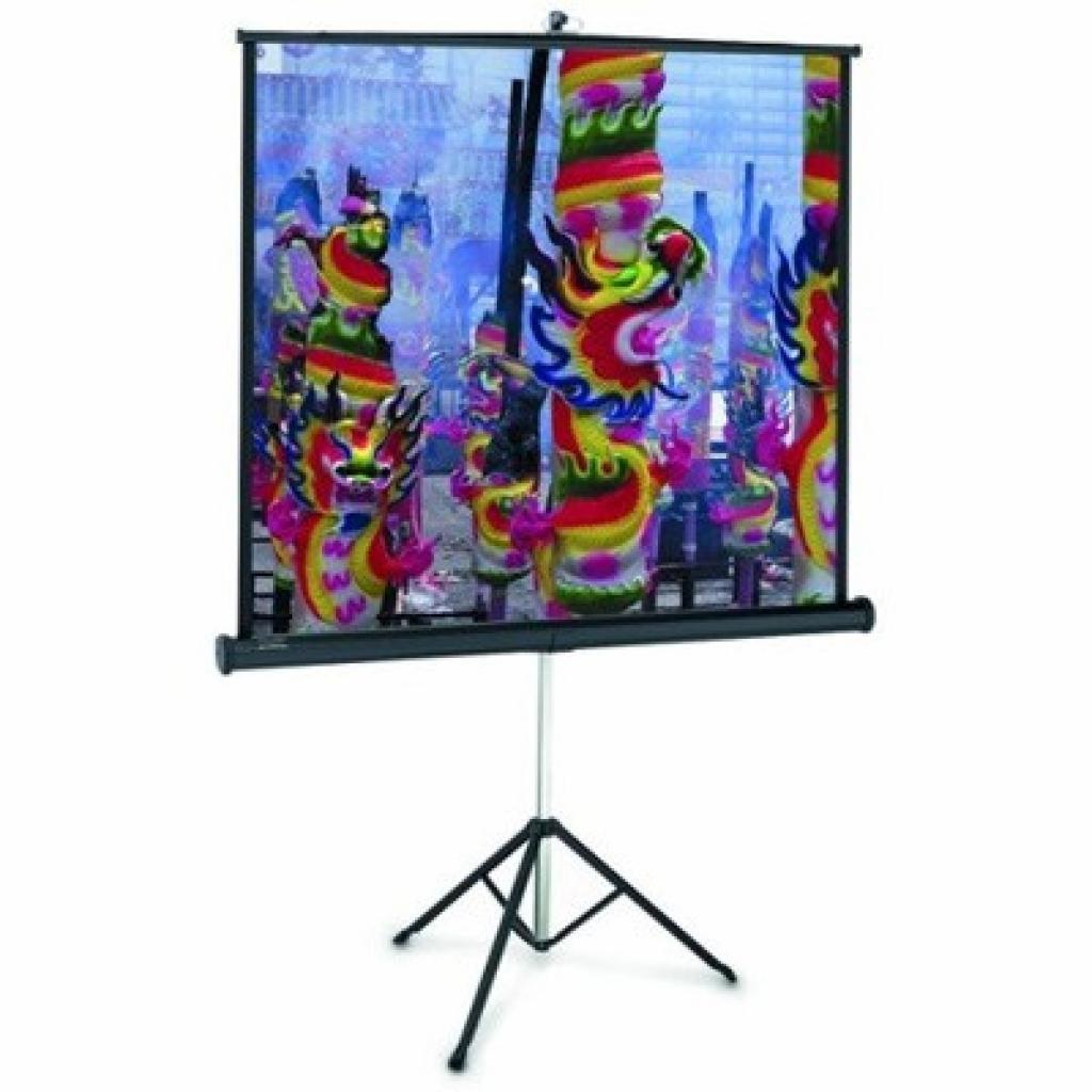 Проекционный экран Professional 213x213cm Projecta (10430110)