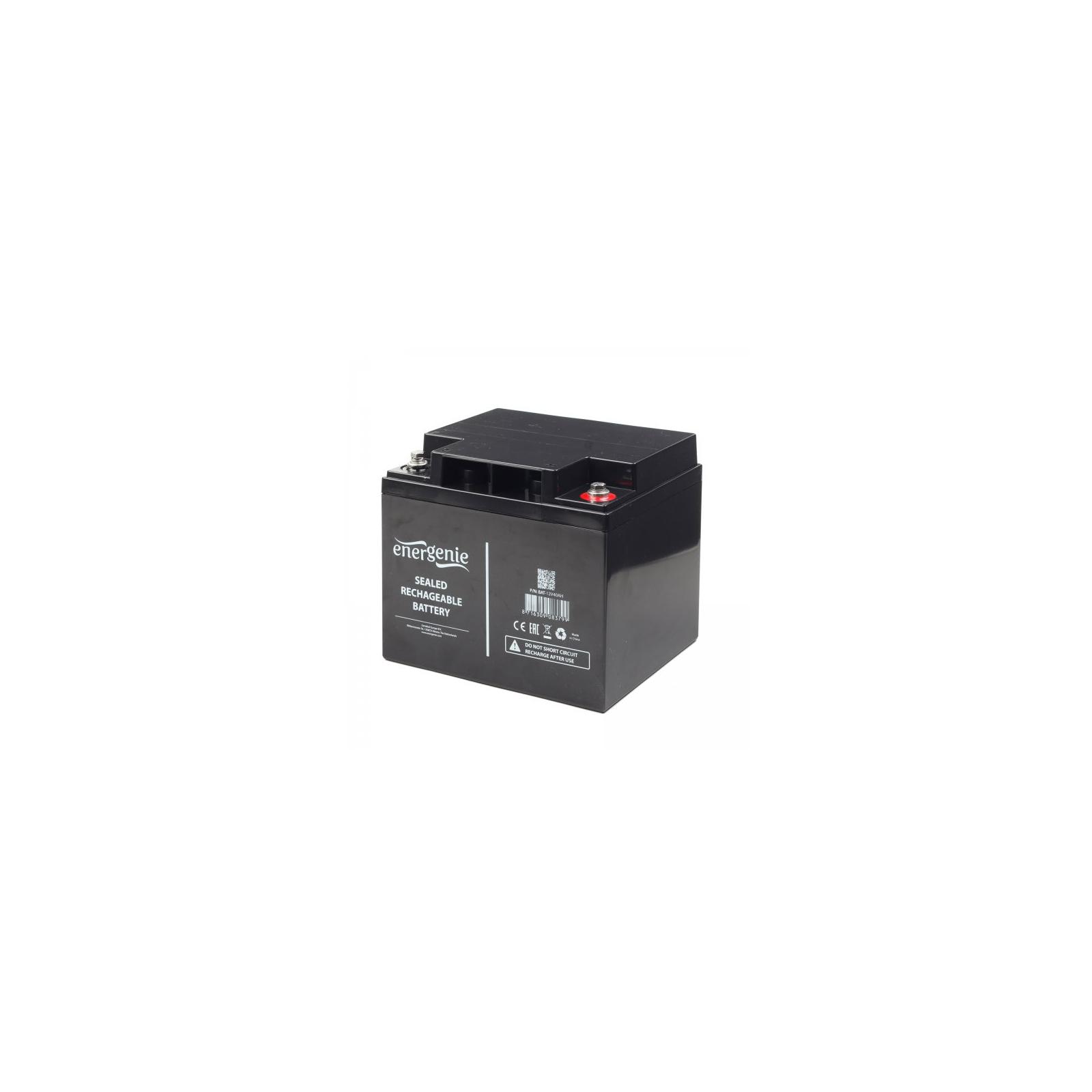 Батарея к ИБП EnerGenie 12В 33 Ач (BAT-12V33AH)