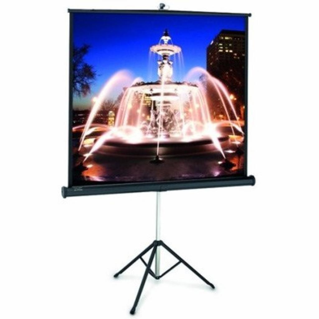 Проекционный экран ProView 152x152см Projecta (10430112)