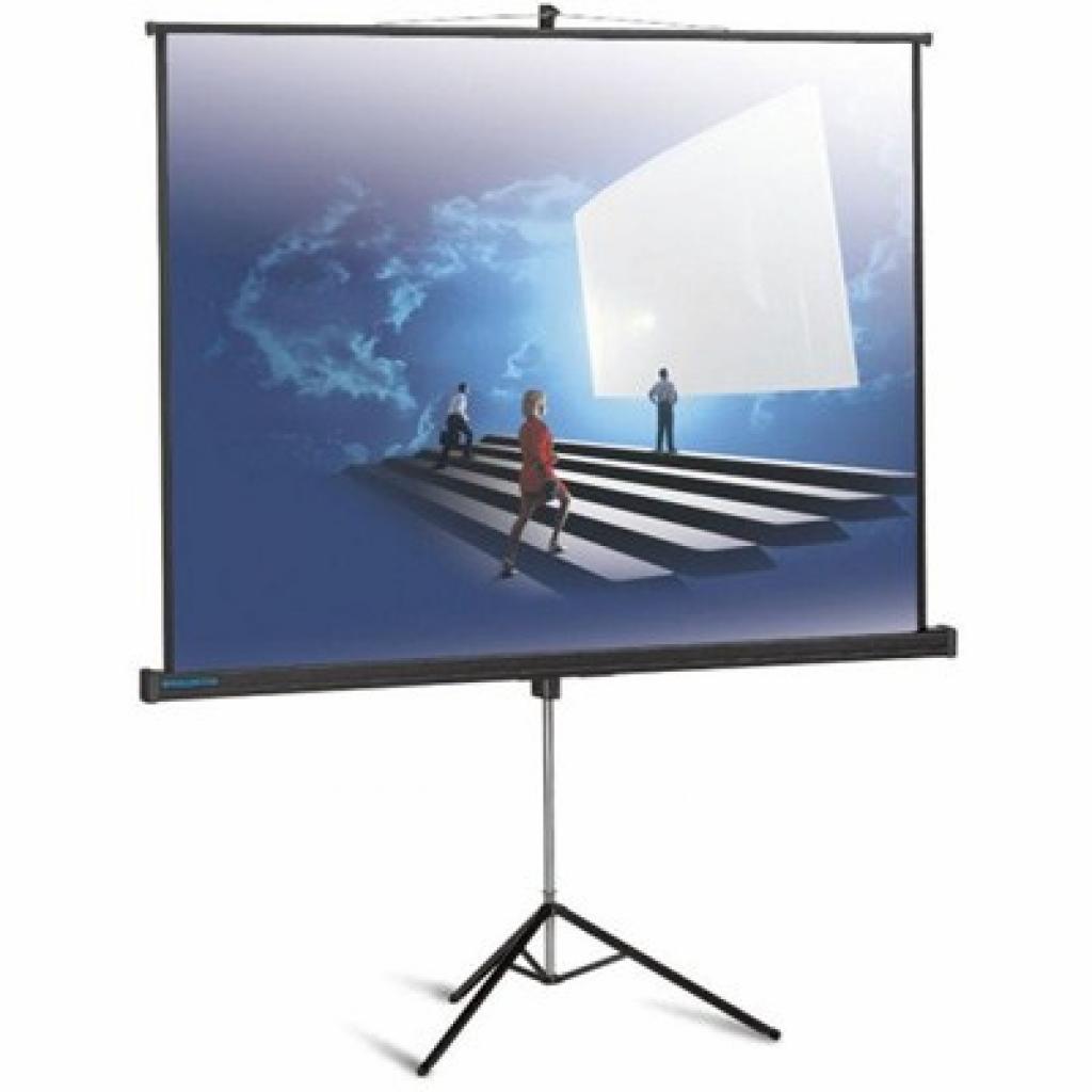Проекционный экран ProView 178x178см Projecta (10430113)