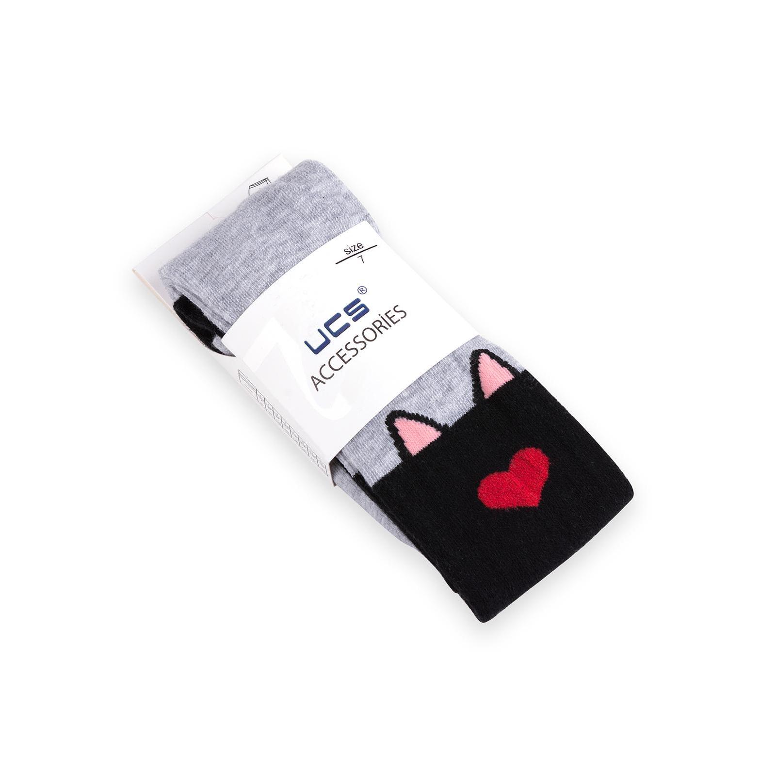 Колготки UCS Socks с котиками (M0C0301-1196-146G-gray) изображение 3