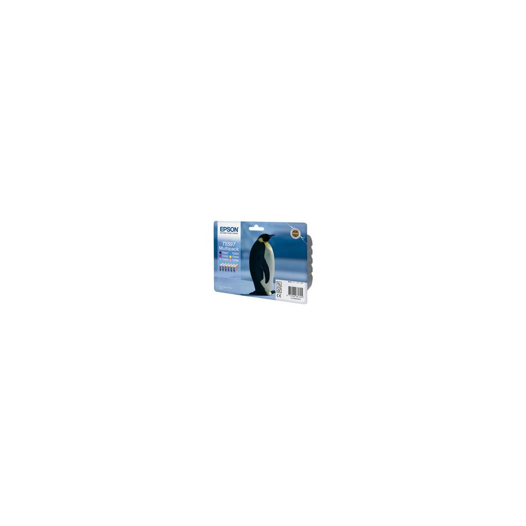 Картридж Epson RX700 Bundle (C13T55974010)