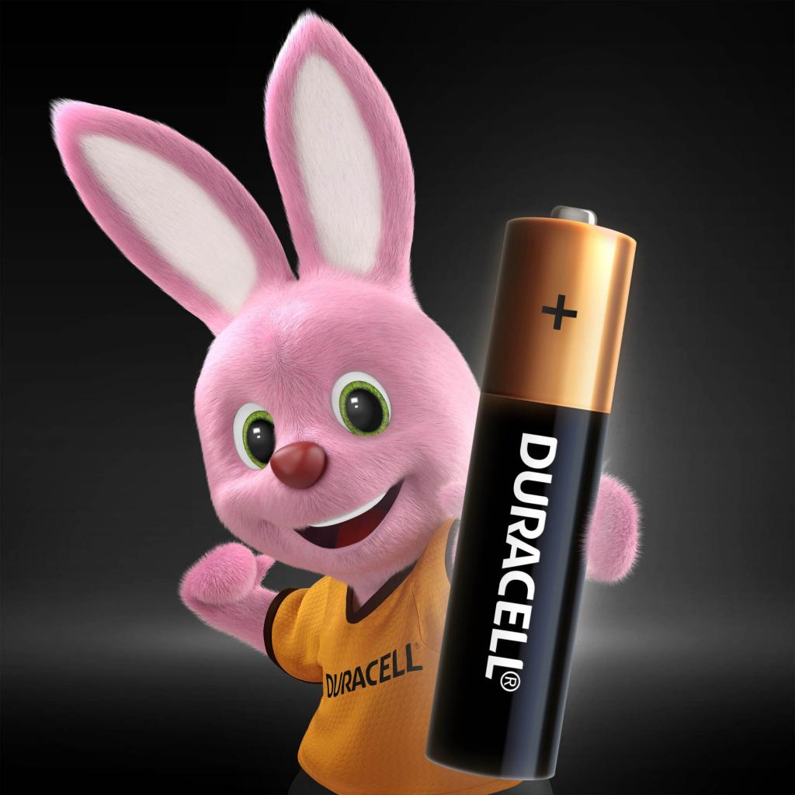 Батарейка AAA MN2400 LR03 * 4 Duracell (5000394052543 / 81545421) изображение 2