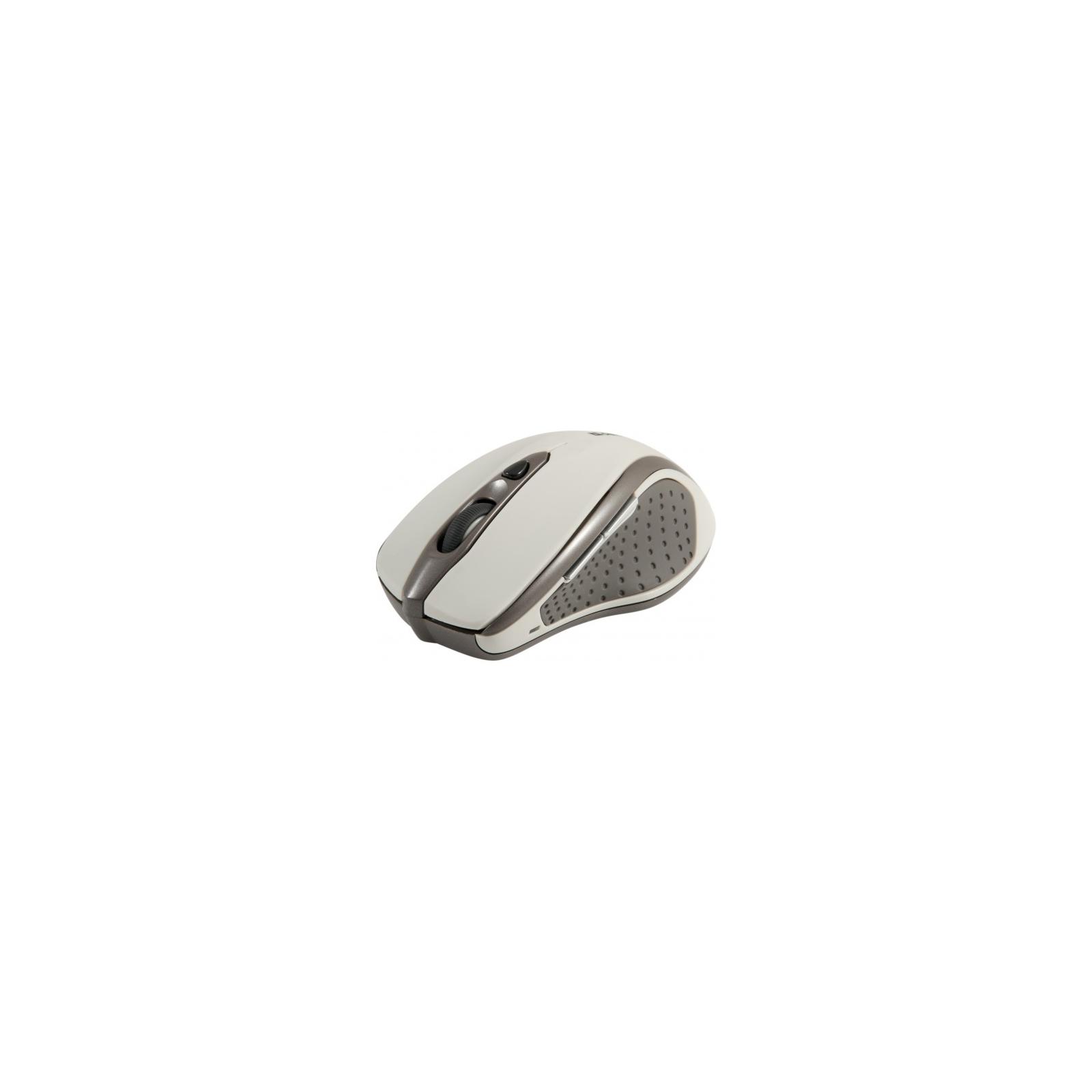Мышка Defender Safari MM-675 Nano (52677)